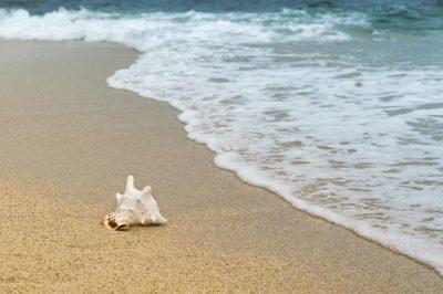 Una vera e propria farmacia naturale: il mare