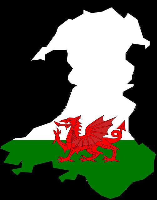 Nazionale di calcio del Galles: storia, trofei e curiosità