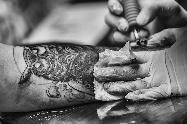 Tatuaggi uccelli: idee ed esempi, dove realizzarli e costo
